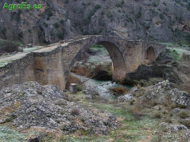 Bonito_puente_de_el_castellar_20140708_1704721061