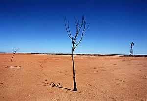 Desertizacin